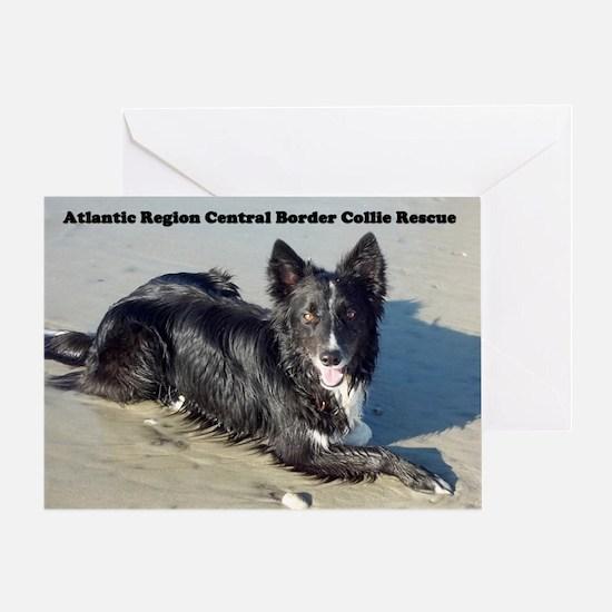 Atlantic Region Central Boder Collie Greeting Card