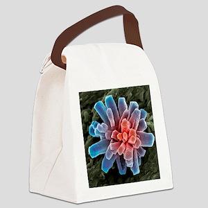 Calcium phosphate crystal, SEM Canvas Lunch Bag