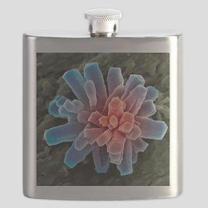 Calcium phosphate crystal, SEM Flask