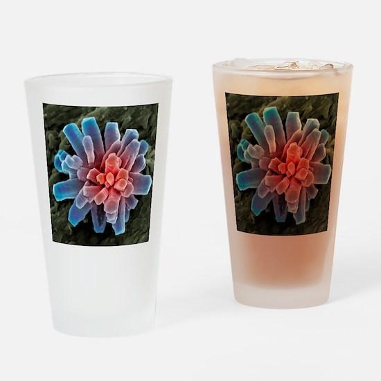 Calcium phosphate crystal, SEM Drinking Glass