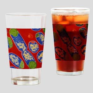 E. coli bacteria Drinking Glass
