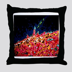 Skylab combined XUV photo of solar pr Throw Pillow