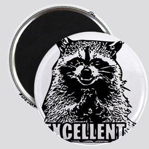 Excellent Raccoon Magnet
