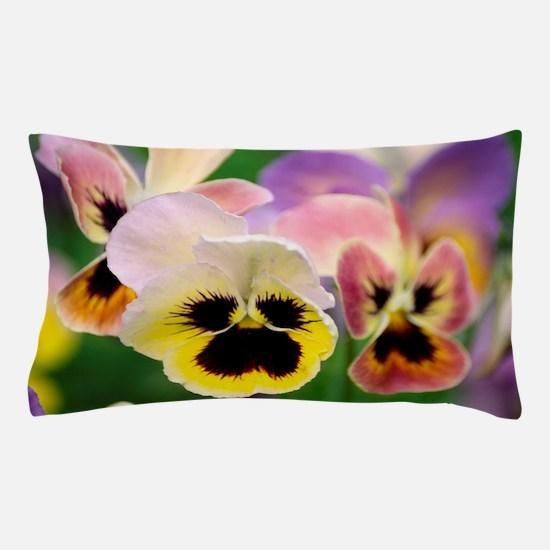 Pansies (Viola wittrockiana) Pillow Case