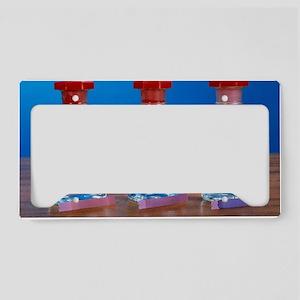 Litmus paper test License Plate Holder