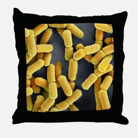 Lactobacillus bacteria, SEM Throw Pillow