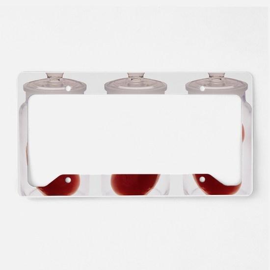 Spare kidneys License Plate Holder