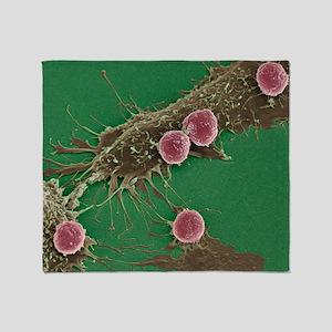 T lymphocytes and cancer cells, SEM Throw Blanket