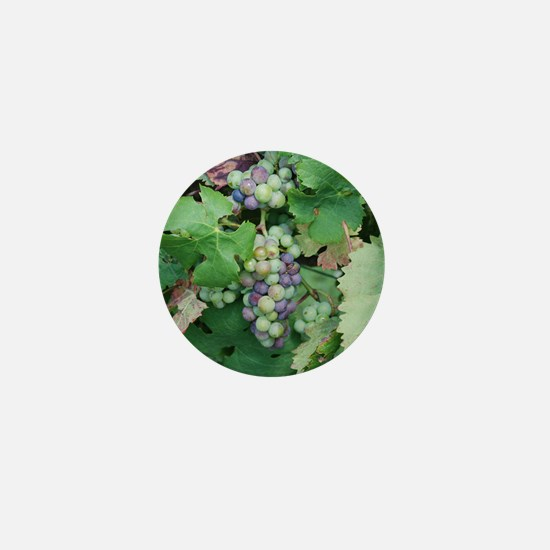 MP_Flower_6 Mini Button