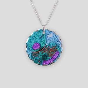 Synapse nerve junction, TEM Necklace Circle Charm