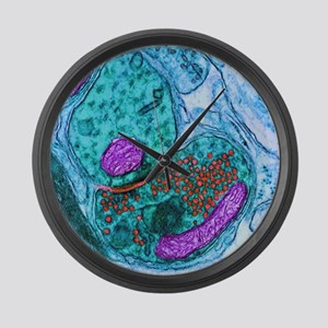 Synapse nerve junction, TEM Large Wall Clock