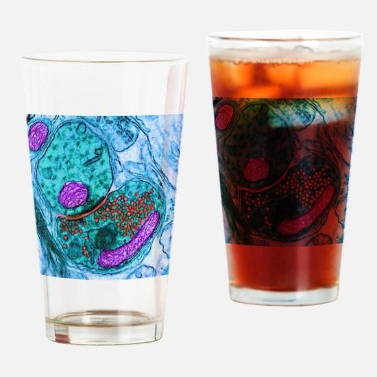 Synapse nerve junction, TEM Drinking Glass