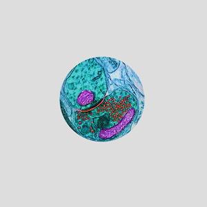 Synapse nerve junction, TEM Mini Button