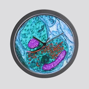Synapse nerve junction, TEM Wall Clock