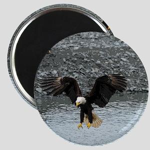 MP_Eagle_3 Magnet