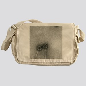 TEM of Lambda bacteriophages Messenger Bag