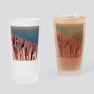 Tendon, SEM Drinking Glass