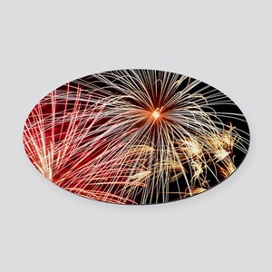 Time-exposure image of a firework  Oval Car Magnet