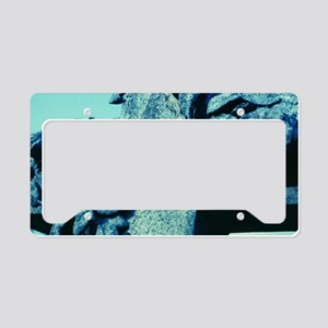 Tombstone License Plate Holder
