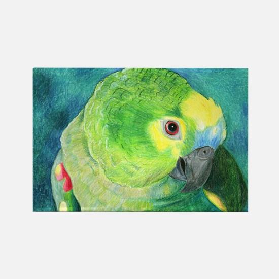 Blue-Fronted Amazon Rectangle Magnet