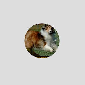 Shetland Sheepdog Cooper Mini Button