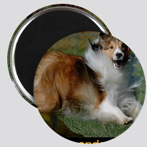 Shetland Sheepdog Cooper Magnet