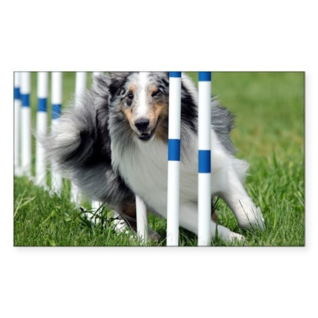 Shetland Sheepdog Blast Sticker (Rectangle)