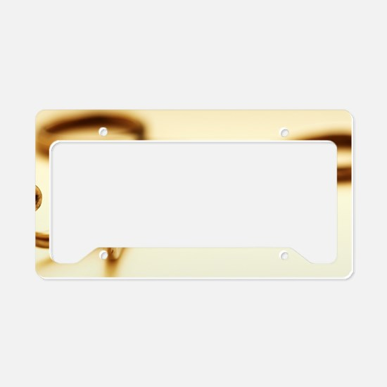 Towel clip License Plate Holder