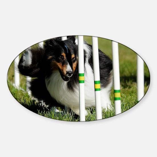 Shetland Sheepdog Jackpot Sticker (Oval)