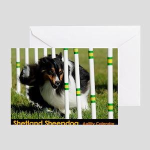 Shetland Sheepdog Jackpot Greeting Card