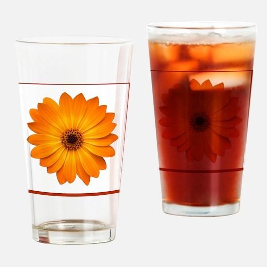 Butterscotch Osteo Drinking Glass
