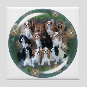 Cavalier King Charles Spaniel Group Tile Coaster