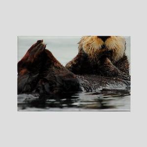 MP_Otter_1 Rectangle Magnet
