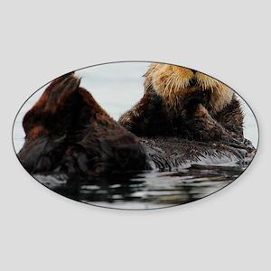 MP_Otter_1 Sticker (Oval)