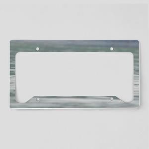 MP_Otter_3 License Plate Holder