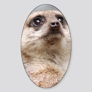 Meerkat Kindle Sleeve Sticker (Oval)