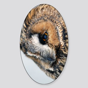 Eagle Owl Incredible Phone Case Sticker (Oval)