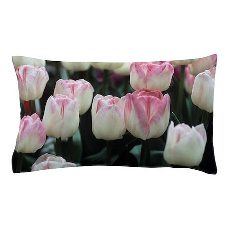 Tulipa 'Meissner Porzellan' flowers Pillow Case