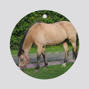 New Forest Pony Round Ornament