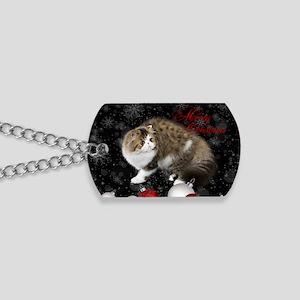 Persian Kitten Christmas Card Dog Tags
