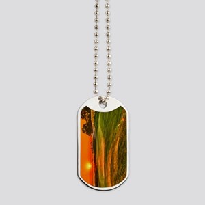 Sunrise over 15 green Dog Tags
