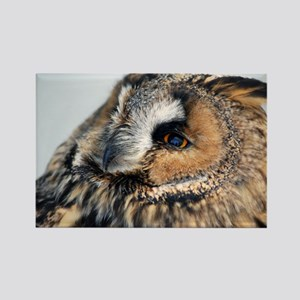 Eagle Owl Bucket Bag Rectangle Magnet
