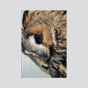 Eagle Owl Kindle Sleeve Rectangle Magnet