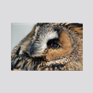 Eagle Owl Galaxy 2 Rectangle Magnet