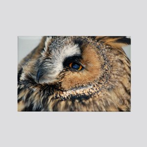 Eagle Owl Stadium Blanket Rectangle Magnet