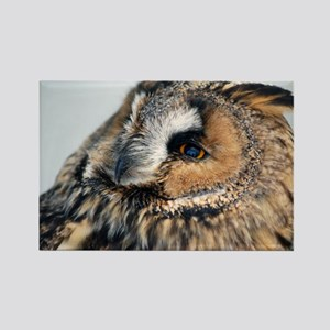 Eagle Owl Pillow Case Rectangle Magnet