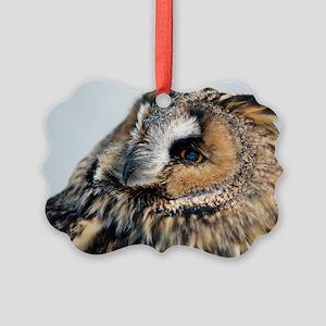 Eagle Owl Pillow Case Picture Ornament