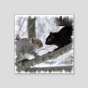 """Black Gray Squirrel Square Sticker 3"""" x 3"""""""