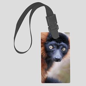 Red Ruffed Lemur iPad Folio Cove Large Luggage Tag