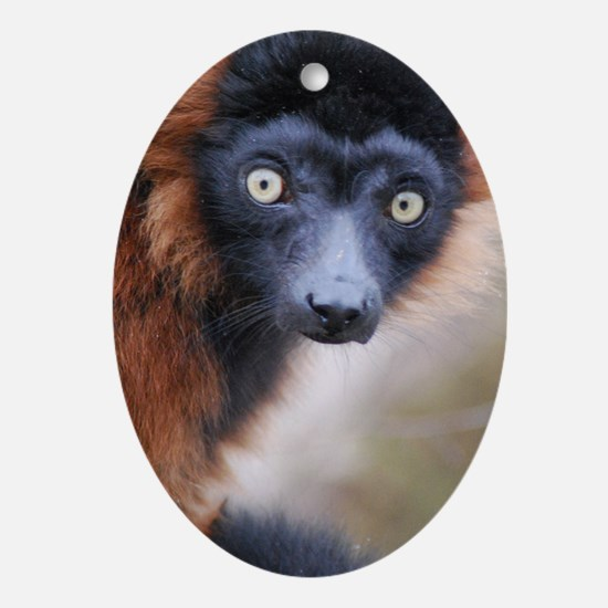 Red Ruffed Lemur Wall Decal Oval Ornament